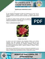 Actividad de aprendizaje 2 gladis castro goez.pdf