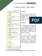 Informe de Visita Técnica Valle Verde