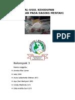 Penelitian Pada Daging Mentah (Makalah IPA)