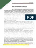 PRACTICA 01Lab Actividad Enzimatica de La Amilasa
