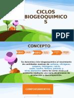 Ciclo Biogeoquimicos Luisa