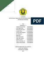 laporan identifikasi mikroba A3.doc