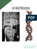 Nucleic Acids1-1
