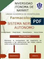 Sistema Nervisoso Autonomo