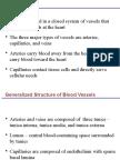 Cardiovascular Abdurap