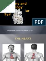 Physiology Cardiovascular System