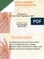 Presentation DKI