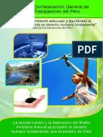 El tema ambiental desde la CGTP