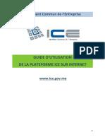 Guide_ICE.pdf