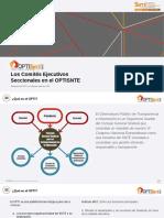 Snte - Ces06 - Opti - El Opti en Las Secciones