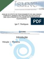 Apresentação - Igor F Rodrigues