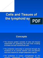 Lecture 1 Immune System