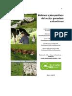 Documento Balance y Perspectivas 2015 Final