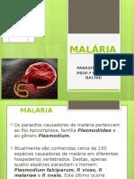 01 MALÁRIA