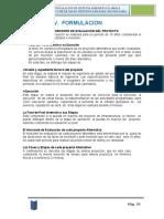 IV. Formulacion Defensa Ribereña
