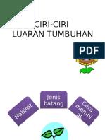 CIRI-CIRI LUARAN TUMBUHAN