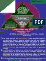 FOSFITOS -hbh-02