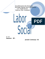 Labor Social1