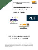 Tema 5 Plan de Negocios Seguimiento Operativo de La Empresa