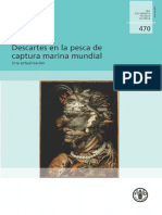 Descartes en La Pesca de Captura Marina Mundial Una Actualización