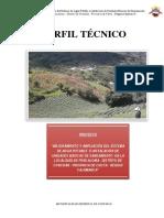 PIP PENCALOMA.pdf