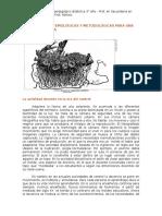 EXIGENCIAS EPISTEMOLÓGICAS Y METODOLÓGICAS PARA UNA DOCENCIA FUTURA.docx