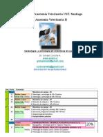 001-2013-Clase AV2 OsteolMb Canino