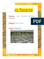 RAIZ FLOTANTE