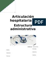 Informe Articulacion Hospitalaria y Estructura Administrativa