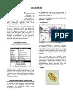 Giardia.pdf