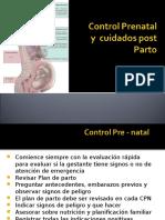 Control Prenatal y Cuidados Post Natal
