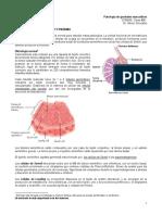 06.1 - Patología de Genitales Masculinos