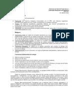 2.2 - Respiratorio - Patologias Neoplasicas