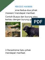 Simbiosis Haiwan Dan Tumbuhan