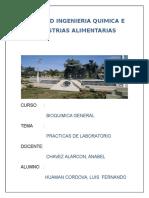 BIOQUIMICA-INFORMES pajas.docx