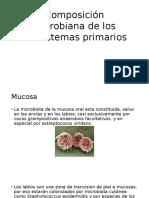 Composición Microbiana de Los Ecosistemas Primarios