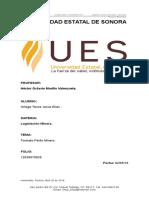 Formato Perito Minero.docx Elias Ortega