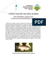 Aquaculture - Tilapia Marin (élevage).pdf