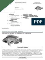 FAO Fisheries & Aquaculture - Cultured Aquatic Species Fact Sheets - Oreochromis Niloticus (Linnaeus, 1758 )