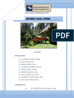 CANAL CIMIRM.pdf