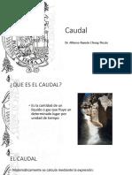 P2_CAUDAL