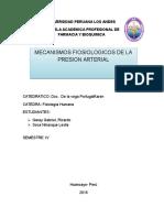 Trabajo Monograficon Sobre El Mecanismo de La Presion Artetial