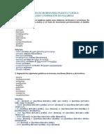 PALABRAS Coment Morfologico- 1 Bach.