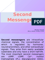 Second Messengers