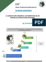 LA AGRICULTURA ORGÁNICA.pdf