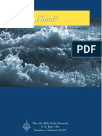 Why the Flood