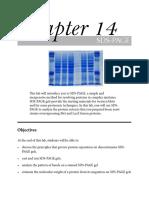 14-SDS-PAGE_2014