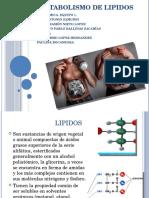 Bioquimica-lipidos