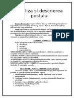 Analiza_si_descrierea_postului.doc