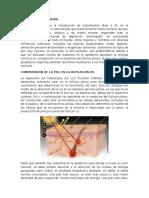 Introducción General Ipl